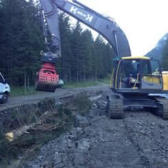 01 Installation von Raubaeumen auf temporaerem Damm