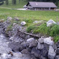 03 AEltere Ufersicherung mit Raubaeumen