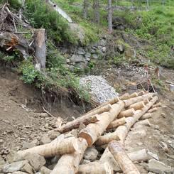 09 Entrindetes Laerchenholz eingebaut