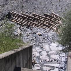 09 Prallhangschutz mit Holzkasten und Stecklingsbepflanzung